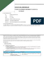 PROYECTO-DE-APRENDIZAJE-10