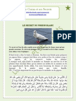 Secret de pigeon.docx