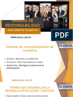 18-1-17_ACS_CAP_-_GRADOS_DE_RESPONSABILIDAD