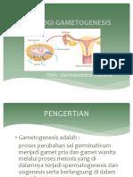 3. GAMETOGENESIS-ppt