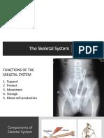 The Skeletal System.pptx