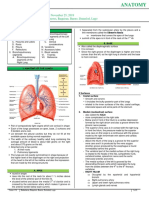 Anatomy.Trans13.Lungs
