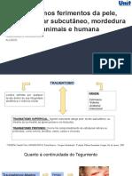 Conduta nos ferimentos da pele, tecido celular subcutâneo, mordedura de animais e humana