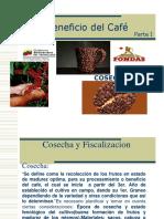 Beneficio del Café (Curso)