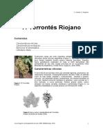 7. Torrontes riojano.pdf