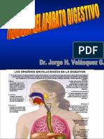 Def Digestivo (1)s Nerv En