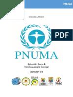 pnuma (9).pdf