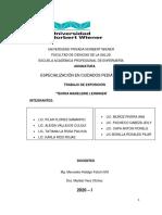 TRABAJO Nº02 TEORIA MADELEINE LEININGER