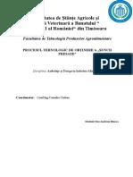 Procesul-Tehnologic-de-Obtinere-a-Suncii-doc