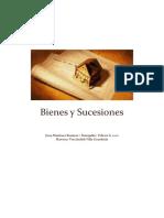 Bienes y Sucesiones ENTREGABLE 1 Version Final