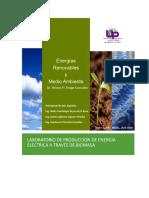 LABORATORIO DE ENERGIA A TRAVES DE BIOMASA
