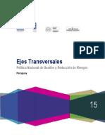 Ejes_sistematizacion_copy.pdf