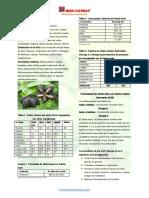 165538748-Una-Ficha-Botanica-Del-Sachainchi.pdf