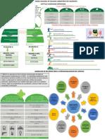 INFOGRAFIA MNVCC CAPITULO 4 DESPLIEGUE OPERACIONAL.pdf