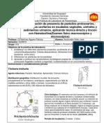 INFORME 5 PARASITOLOGIA.docx