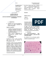 Informe N°3.docx
