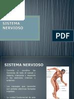 Sistema_nervioso - original.ppt