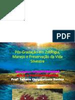 INVERTEBRADOS_AULA_2_TATIANA.pptx