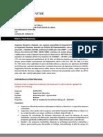 CV Formato - Nombre Apellido