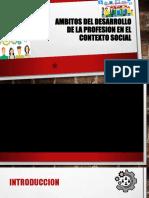 AMBITOS DEL DESARROLLO DE LA PROFESION EN EL