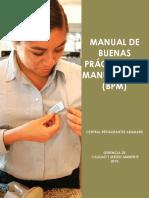 MANUAL-BPM (1)