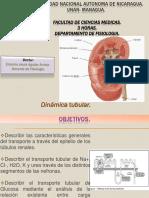 Dinámica-tubular 2018 PDF