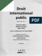 Principio basicos aplicables en el derecho internacional publico