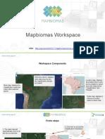 GEE Summit 2017 - Mapbiomas Workspace