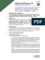 PAMPAM -  TDR - MAESTRO DE OBRA