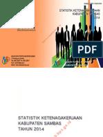 Statistik-Ketenagakerjaan-Kabupaten-Sambas-2014