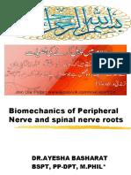 Biomechanics of Nerves