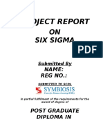 2. Six Sigma Project
