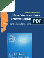 Urolithiasis dan Manajemen Penyakit Urogenital 2019