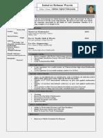 imtsal c.v new pdf