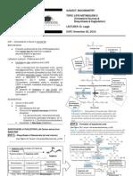 BIOCHEM-Lipid Metabolism 3