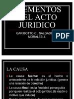Elementos Del Acto Juridico