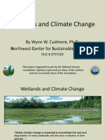 Wetlands and Climate Change (1).ppt