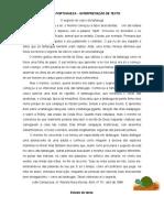 LP Interpretacao de Texto1611201020253