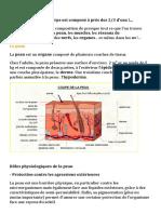 biologie.docx