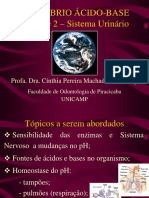 db210-2007-T03-equilibrioacido-base.ppt