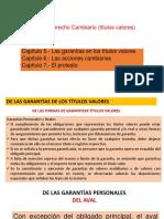 5 Las garantías en los títulos valores