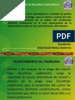 Presentacion Plan PTS.pptx