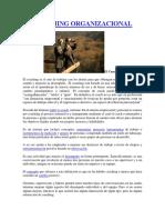 EL_COACHING_ORGANIZACIONAL_El_Coaching.docx