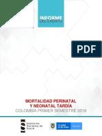 Mortalidad Perinatal y Neonatal INS
