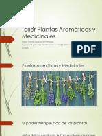 Plantas Aromaticas y Medicinales  I PDF.pdf