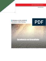 INFOTECNICA GRANALLA SINTO