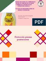 protocolo piezas poteriores