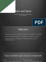 Back and Spine Clinical Morphology 2019 Hallstrom1