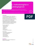 recomendacoes_EM_principios_metodologias_e_praticas