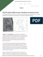 Fóssil Santana do Cariri